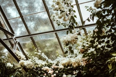 The beginner's guide to Orangeries - here's everything you need to know