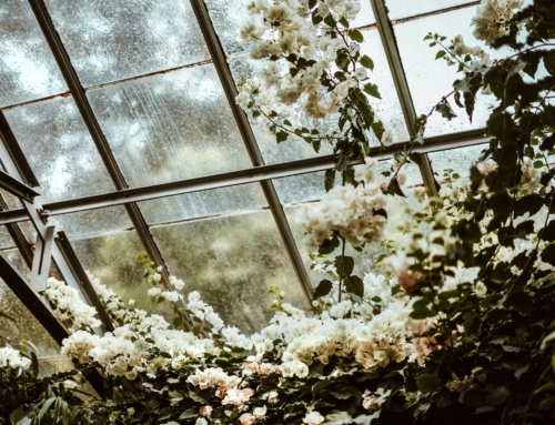 The Beginner's Guide to Orangeries
